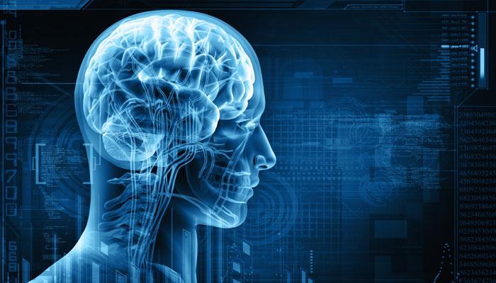 Elektriksel Sinyaller Beyinde Nasıl İşlenir?