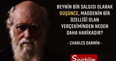 Charles Darwin - 2
