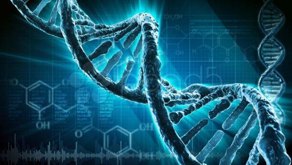 Dakikalar İçinde DNA Analizi Yapabilen Yeni Bir Cihaz Geliştirildi