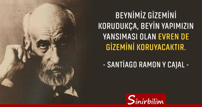 Santiago Ramon Cajal