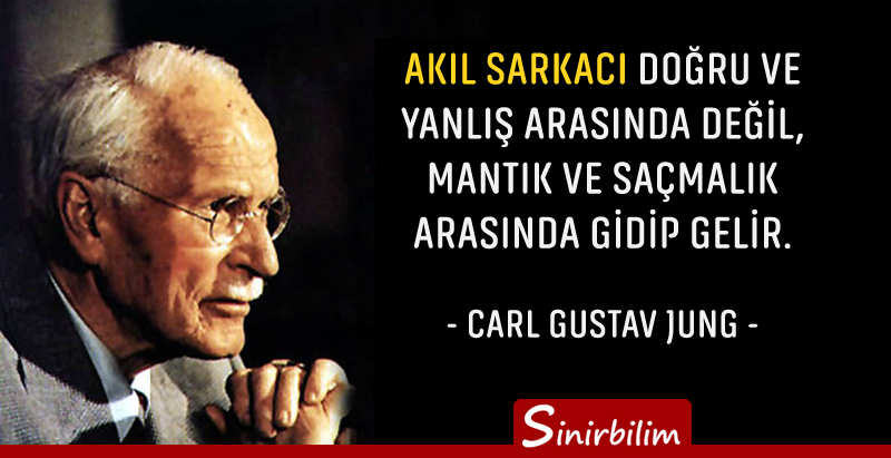 "a biography of carl gustav jung Carl jung: a biography ""we live in an age that is  this is a brief history of the life and times of the revered psychoanalyst carl gustav jung,."