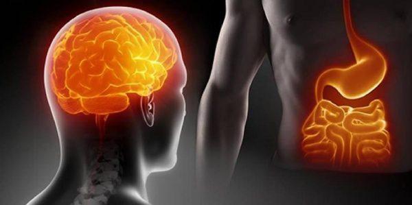 Yiyecek Tüketmek Dopamin Salgılatıyor