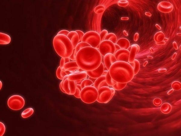 Stres Kandaki Proteinlerin Pıhtılaşmasına Neden Olabiliyor