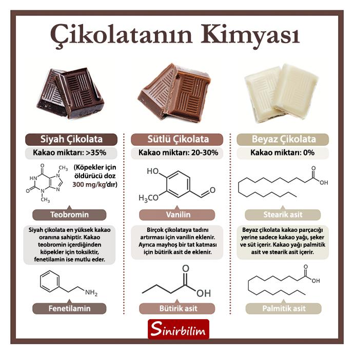 Çikolatanın Kimyası