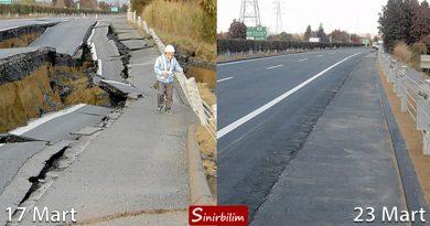 Japonya Depremi ve Japon Çalışkanlığı