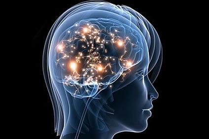 Duygular İle İlişkili Yeni Beyin Bölgeleri Tanımlanıyor