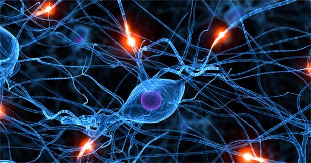 Beyni Kullanarak Nöronlar Kontrol Edilebilir