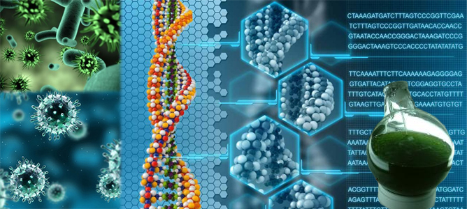 Sentetik Biyoloji İle Kanser ve Diyabet Tedavileri Geliştiriliyor