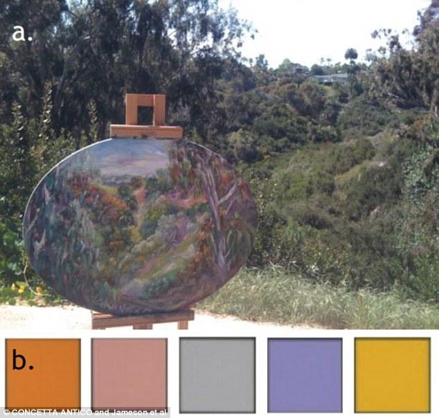 Tetrakromasi: Renkleri Çok İyi Ayırt Etmek