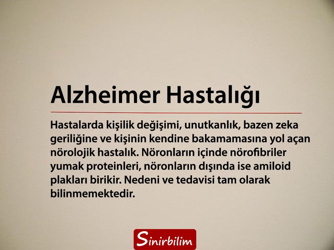 Alzheimer Hastalığı