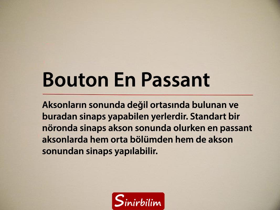 Bouton En Passant