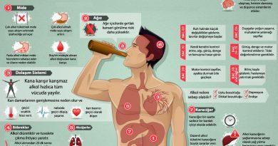 Alkolün vücuttaki yolculuğu