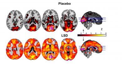 LSD'nin Etkisi