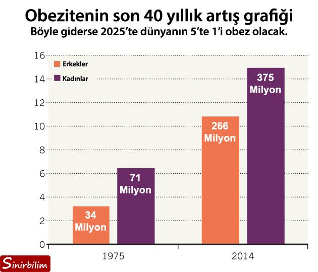 Obezitenin son 40 yıllık artış grafiği