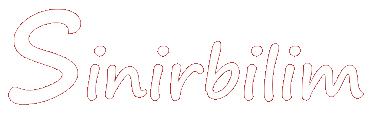 Sinirbilim Logo