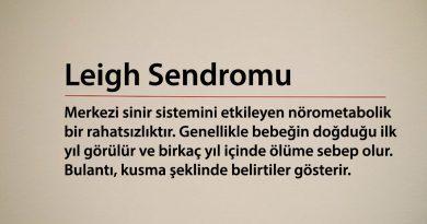 Leigh Sendromu