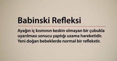 Babinski Refleksi Nedir, Nasıl Test Edilir?
