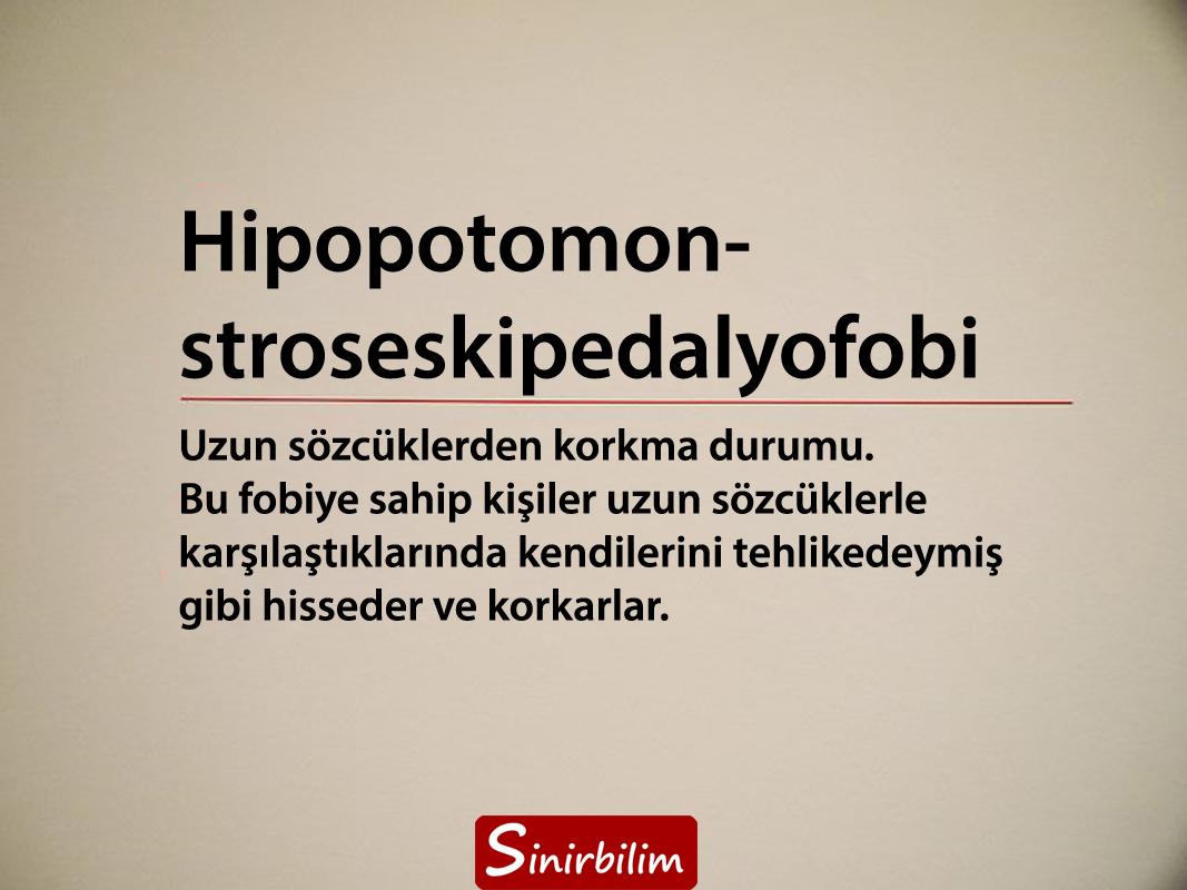 Hipopotomonstroseskipedalyofobi