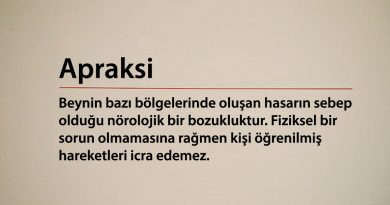 Apraksi