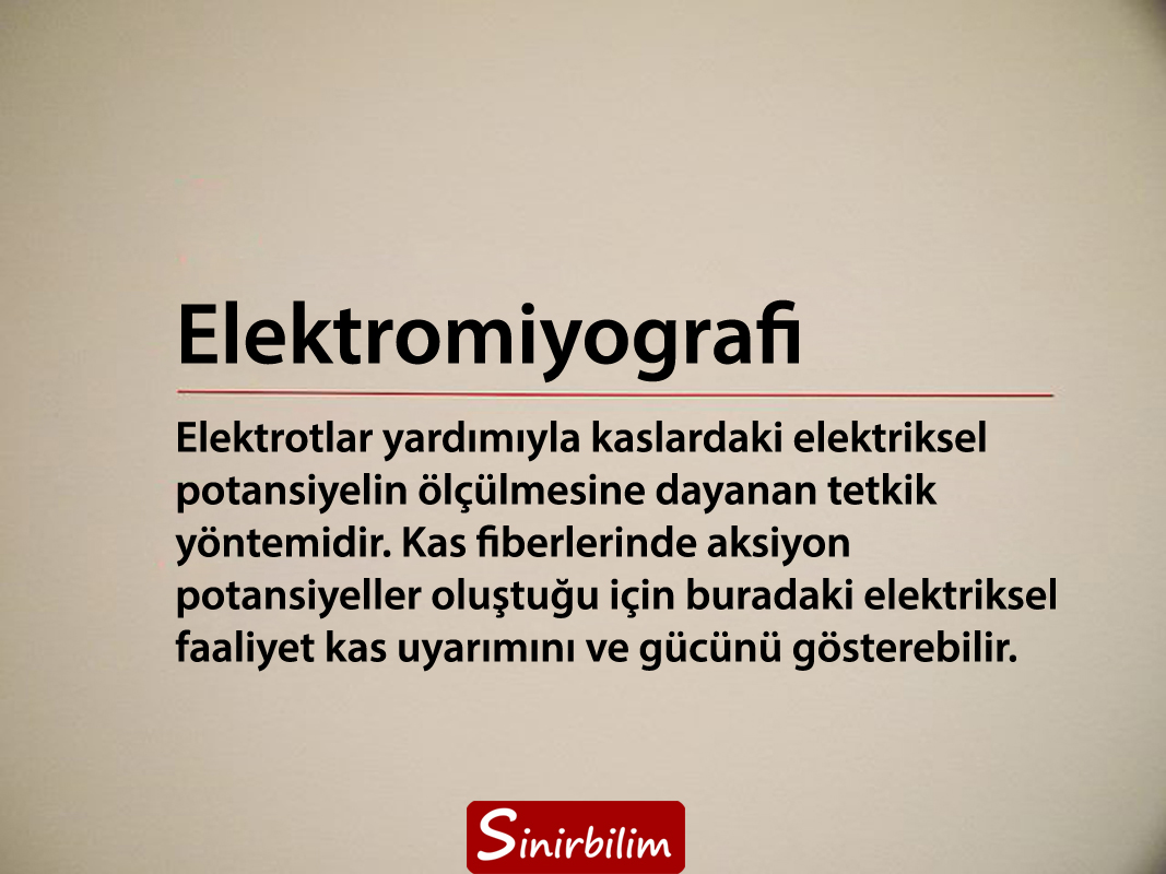 Elektromiyografi