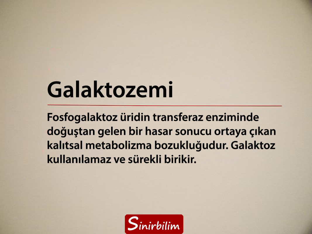 Galaktozemi