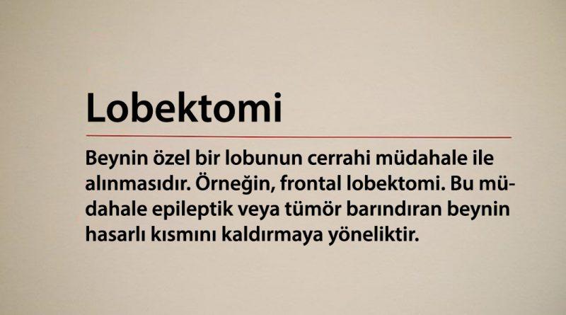 Lobektomi