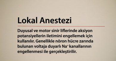 Lokal Anestezi