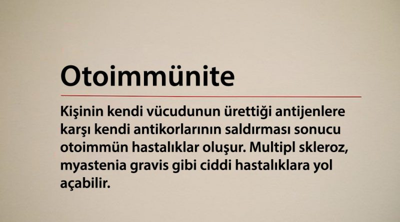 Otoimmünite