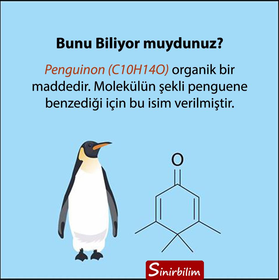 Penguinon