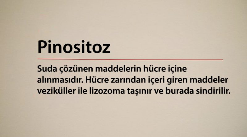 Pinositoz