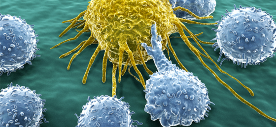 immünoterapi İle Beyin hastalıkları Çok Daha Etkili Tedavi Edilebilecek!