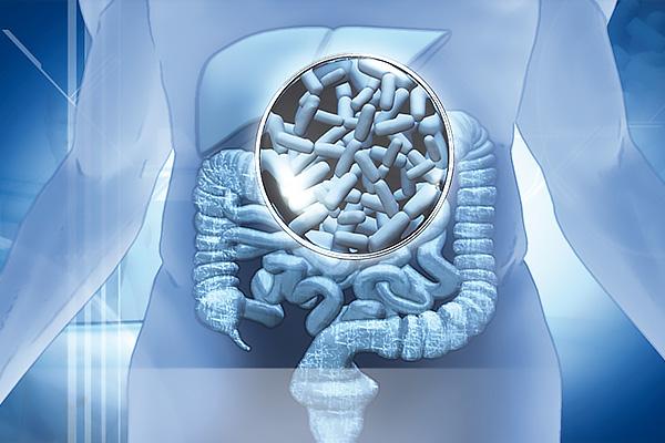 Bağırsak Mikrobiyotasının İyileşmesi İle Otizm Gerileyebilir