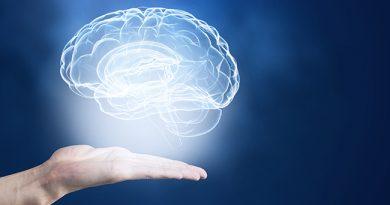 Beynin Gelişimi Vücut Kadar Hızlı Değildir
