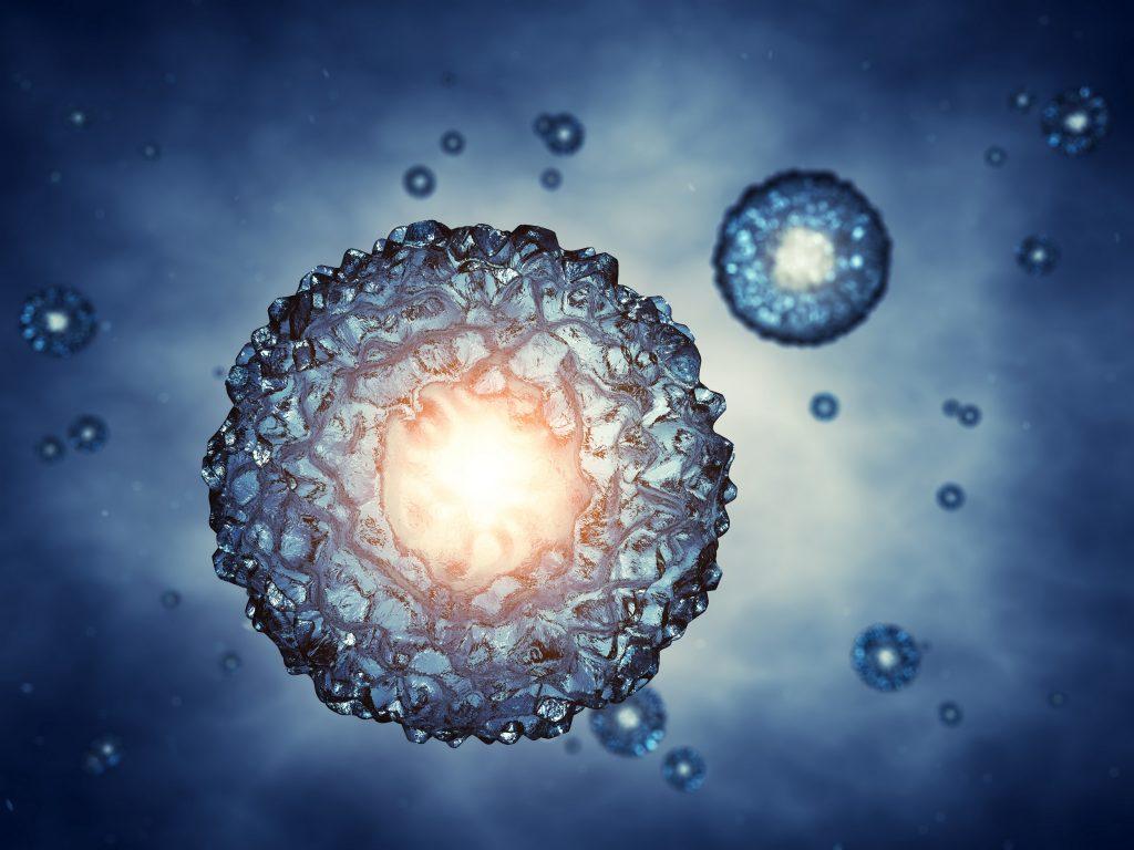 Kök Hücre: Yaşamın Öncüleri