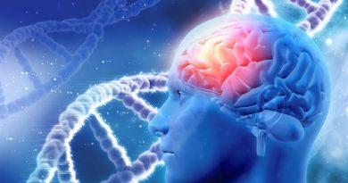 Kişilik Özellikleri ile Psikiyatrik Hastalıklar Arasında Genetik Bağlantılar Bulundu