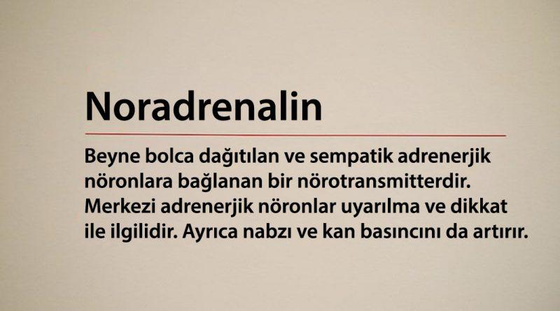 Noradrenalin