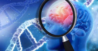 Alzheimer Hastalarında Hafıza Kaybı Tamir Edildi