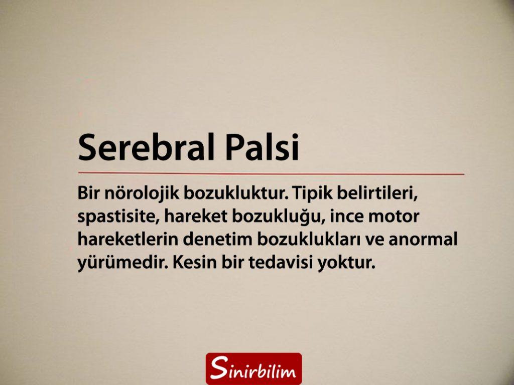 Serebral Palsi