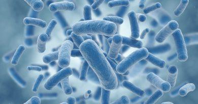 Diyabet İlacı Bağırsak Bakterilerini Olumlu Yönde Etkiliyor