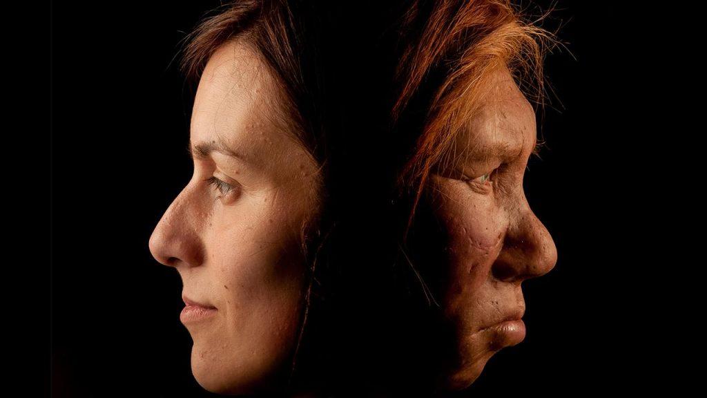 Neandertaller ve Dinozorlar DNA Örneklerinden Canlandırılabilir