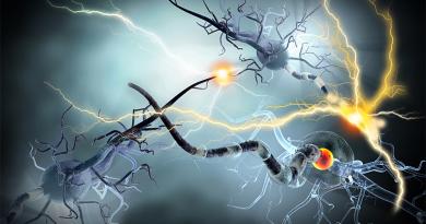 Yaşlanma Glia Hücrelerini Nöronlardan Daha Fazla Etkiliyor
