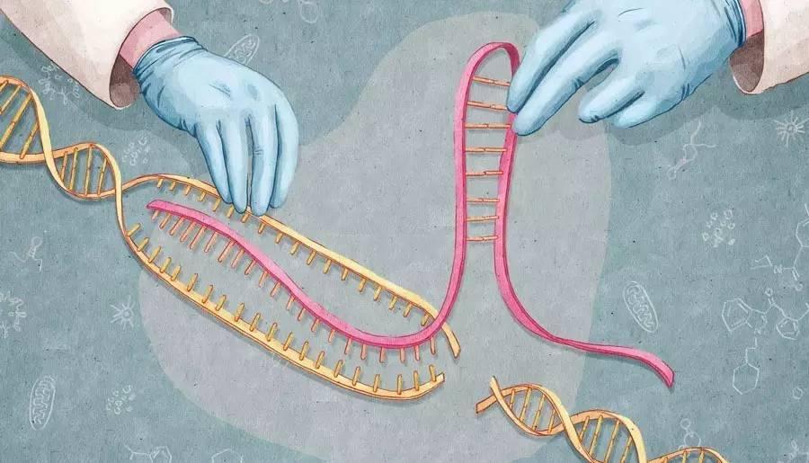 Parkinson Hastalığındaki Proteinler CRISPR ile 'Aydınlatılıyor'