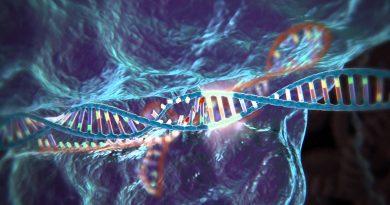 CRISPR-Cas9 Tekniğiyle Yapılan 7 Muhteşem Şey