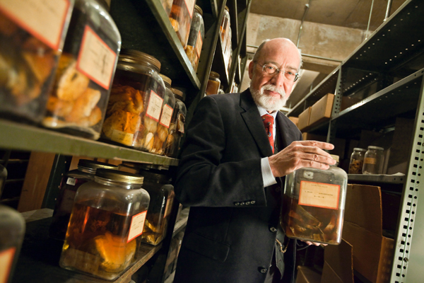 Yale üniversitesinden MD. Harvey Cushing bilim için çok değerli bir hediye bıraktı; şimdi Cushing'in beyin koleksiyonu aktif araştırmalar için kullanılıyor.