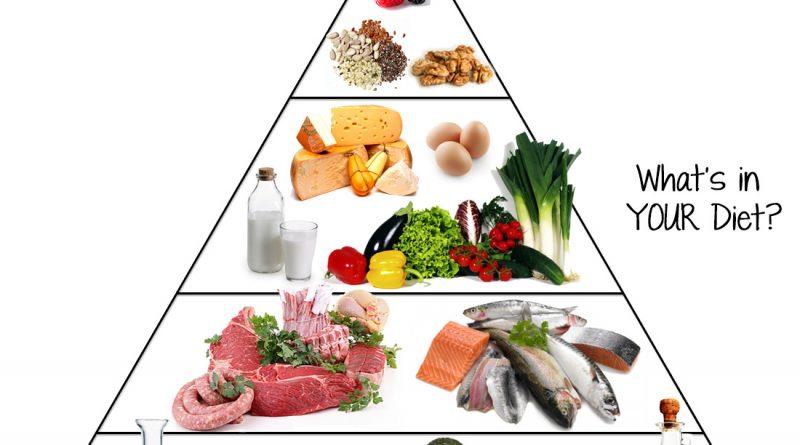 Besin Piramidi ve Sağlıklı Yaşam