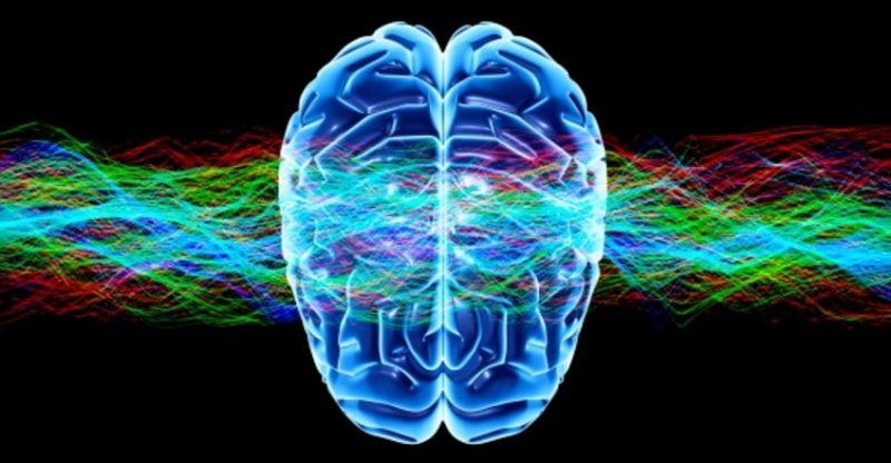 Beyin Faaliyeti Çocuklara Aktarılıyor