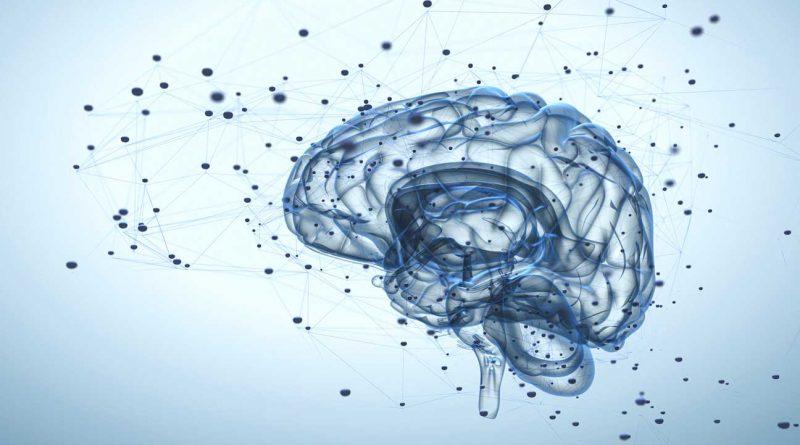 Bilim İnsanları Nörodejenerasyonu Durdurmayı Başardı