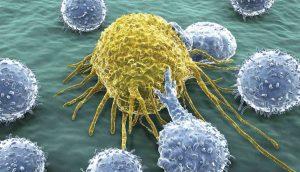 Kanser Hücreleri Laboratuvarda Ölürken Vücutta Neden Ölmüyor