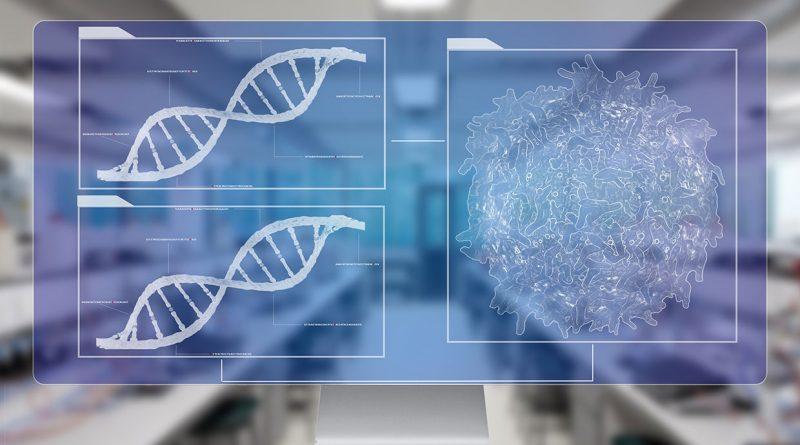 Makine Öğrenimi Sayesinde Beyin Gelişimi ile İlgili Binlerce DNA Değişimi Bulundu