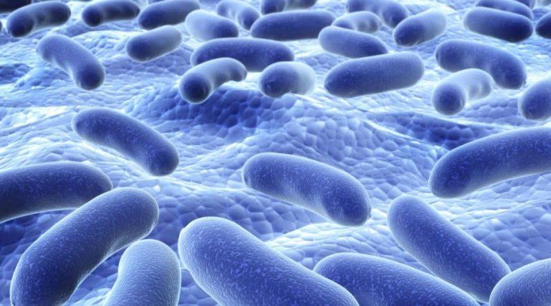 Probiyotik Nedir ve Sağlığımızı Nasıl Etkiler?